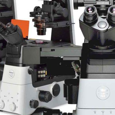 Microscopios Invertidos
