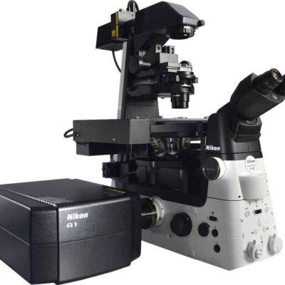Microscopios Confocales